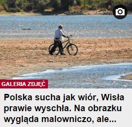 polskaSuchaJakWiór