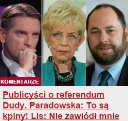 publicyściOreferendum