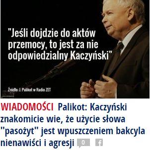 palikotKaczyński