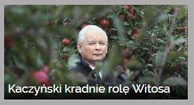 kaczynski-kradnie