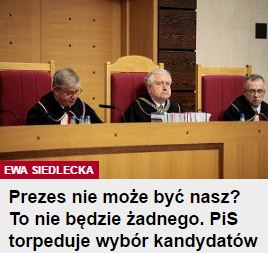 prezes