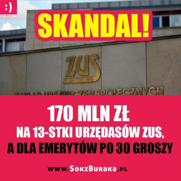 cyngzr-weaayk6c