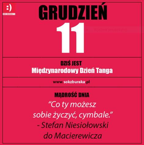 grudzien11