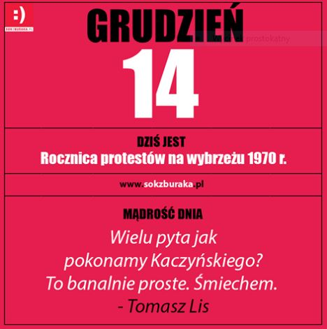 grudzien14