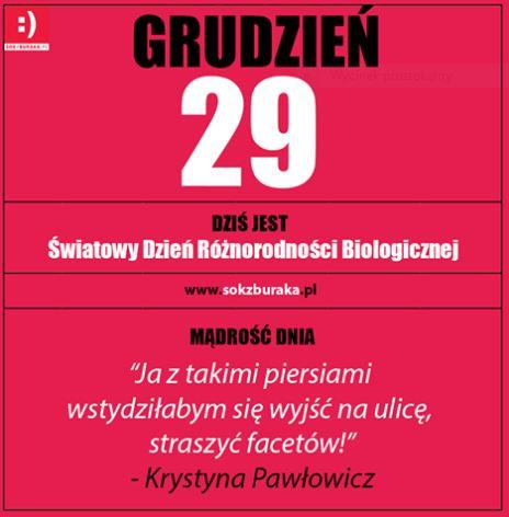 grudzien29