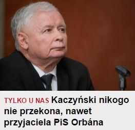 kaczynski-nikog