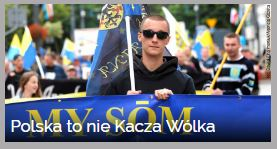 polska-to-nie-kacza-wolka